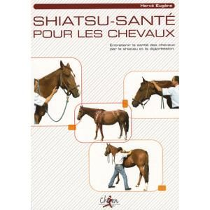 shiatsu-sante-pour-les-chevaux[1]